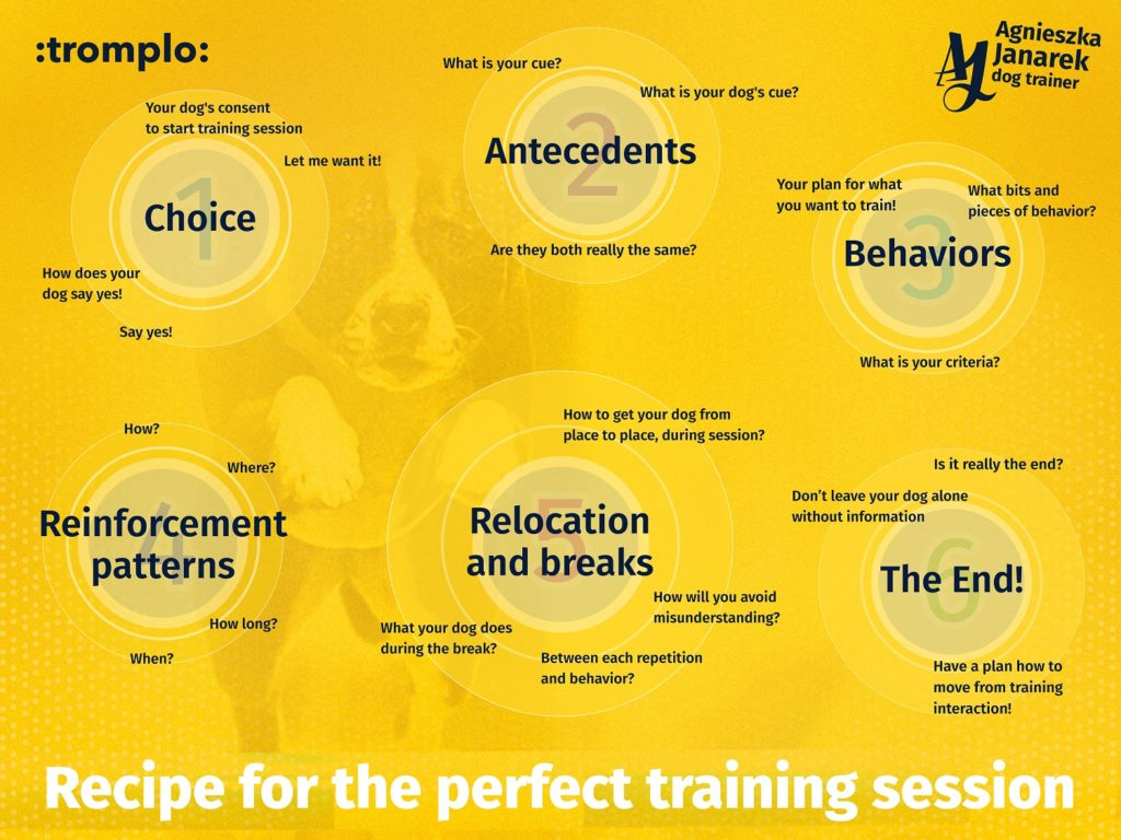 tromplo_perfect training_eng_01 (1)